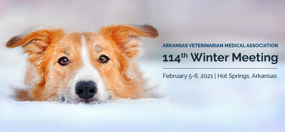114th Winter Meeting | February 5-6 2021